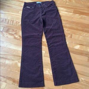 Tommy Corduroy Brown Pants